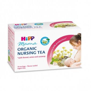 Ekologiška žindyvių arbata (maišeliuose)