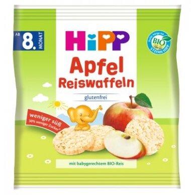 Ekologiški ryžių-obuolių paplotėliai